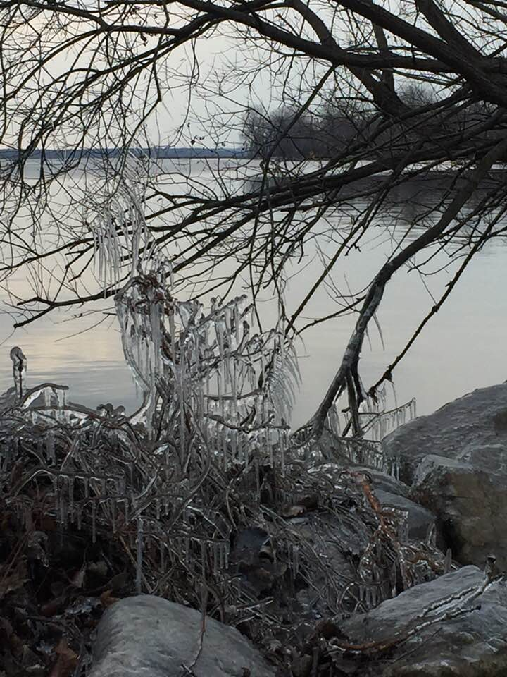 Ice on the Lakeshore. Photo Nancy Berman