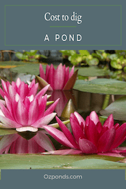 Cost to dig a pond
