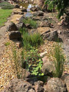 Frontyard pond and stream