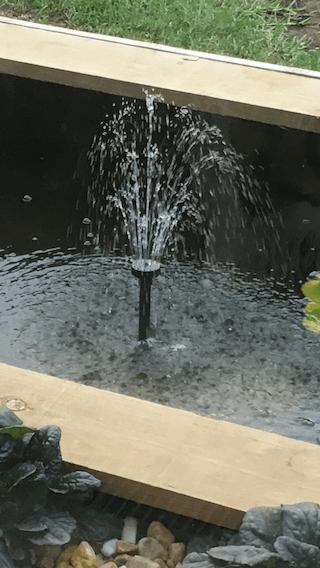 pond pump