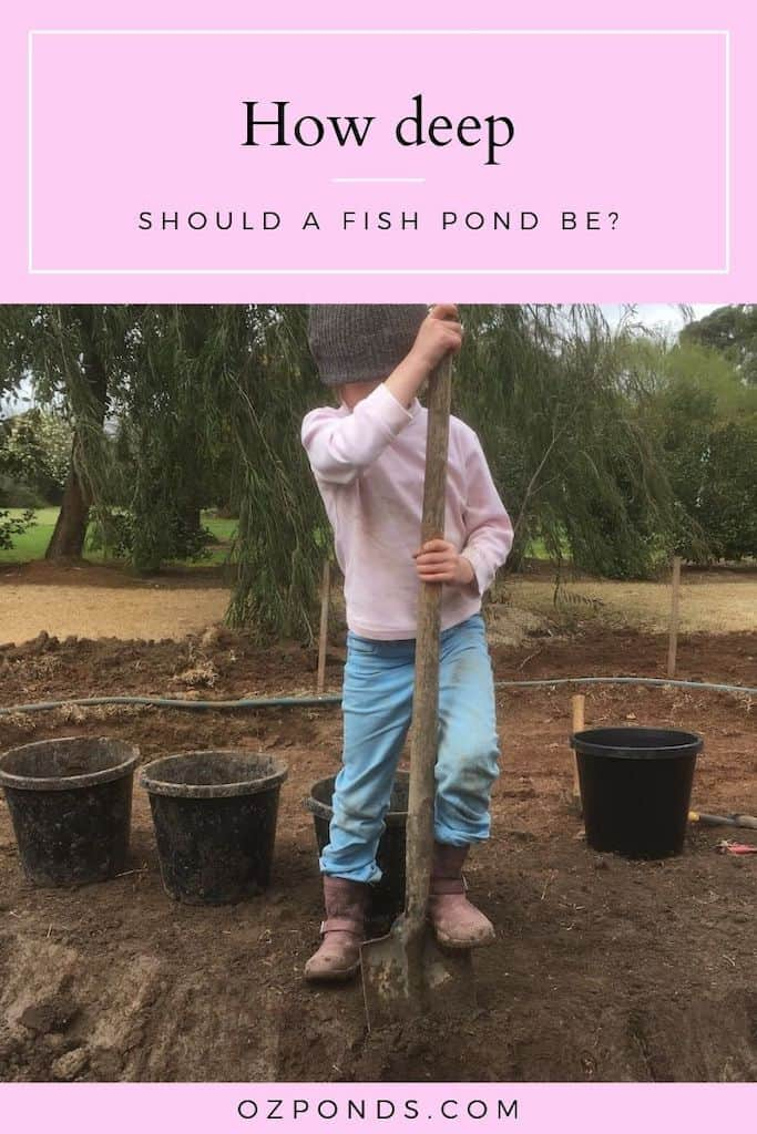 How deep should a fish pond be?