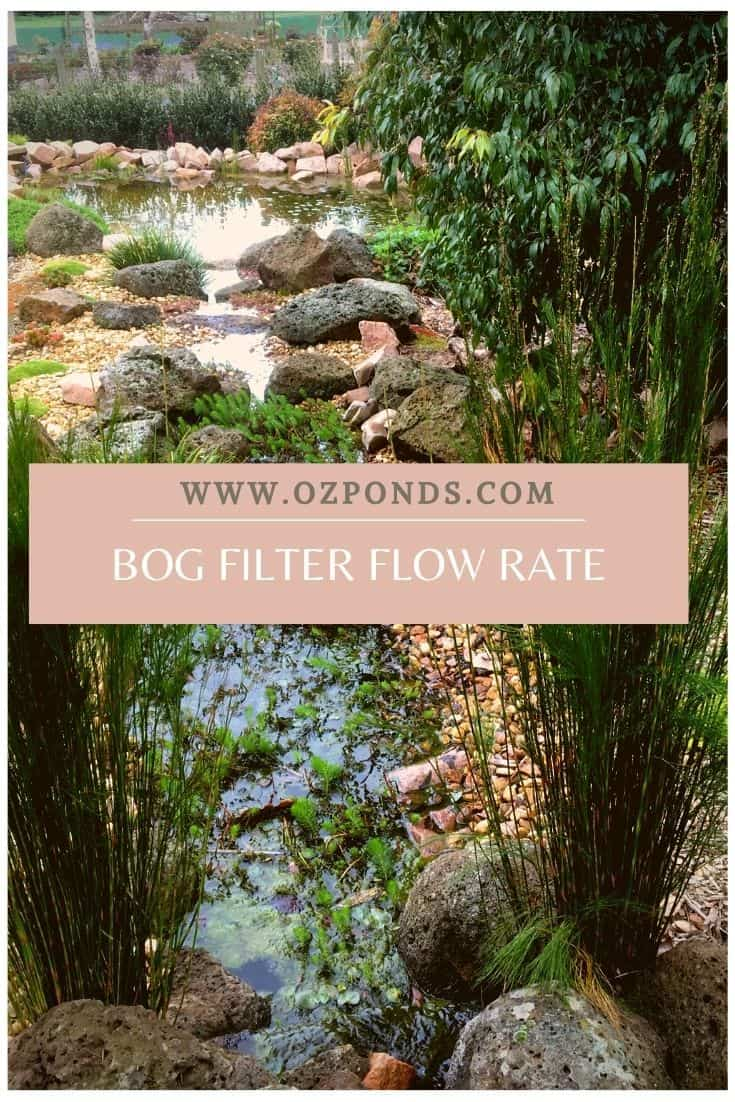 bog-filter-flow-rate