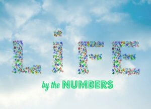 Fuller Life by the Numbers