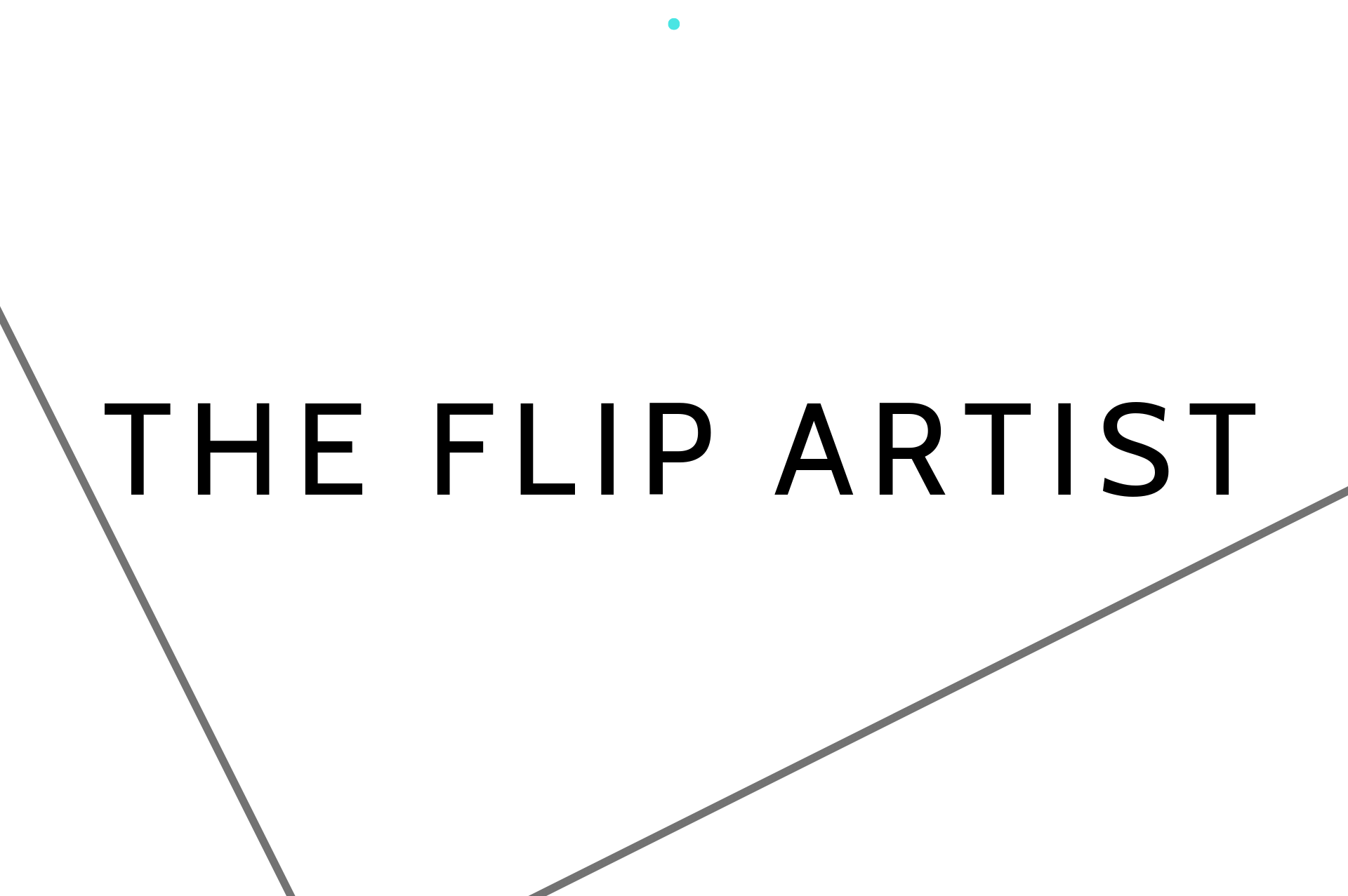 Copy of THE FLIP ARTIST
