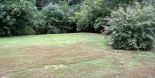 backyard-2
