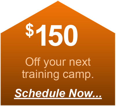 A digital coupon link for 150 dollars off a dog training session