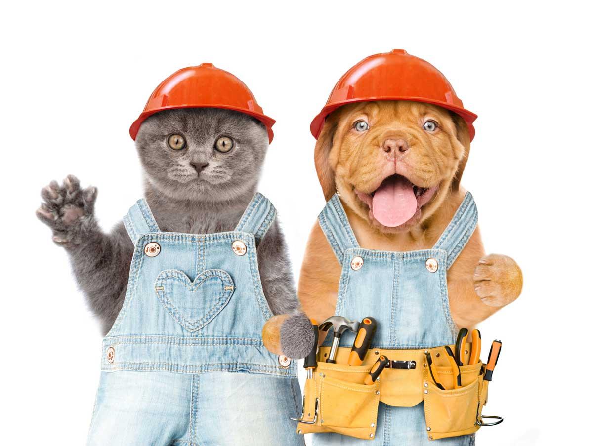 Construction-Pets-clipart