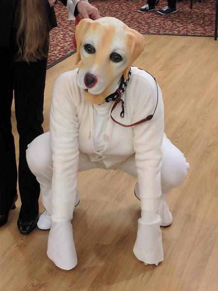 Doggie Elaine Savoy.jpg