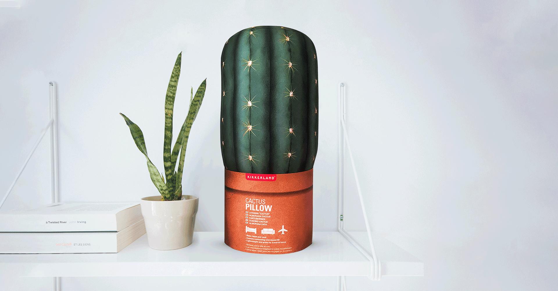 Cactus_Shelf_2-1920×1002
