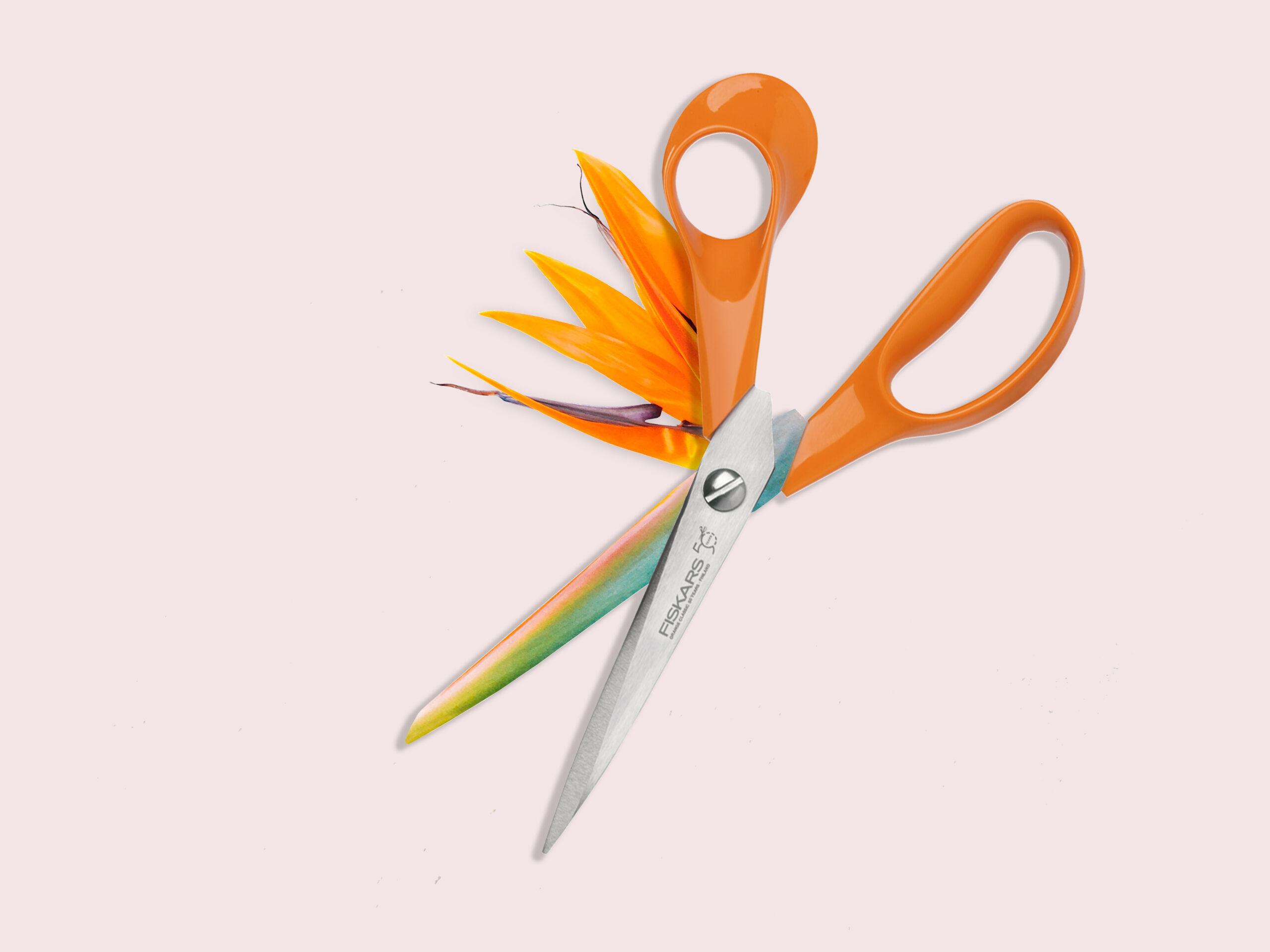 Scissors_Flower_