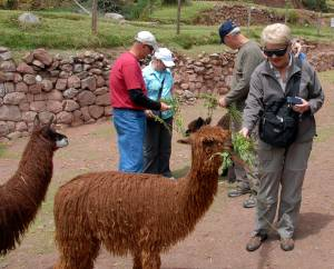 Peru.10.03