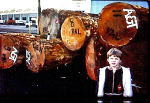 John van Ommen in 1977 or 1978, shipping logs to Valencia and Genoa.