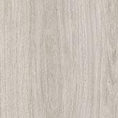 Eucalyptus 6