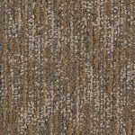 Commercial Carpet in Coral Gables
