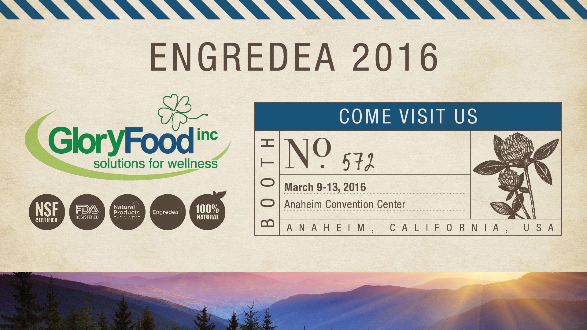 2016 Engredea