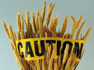 Understanding the Importance of Food Sensitivities