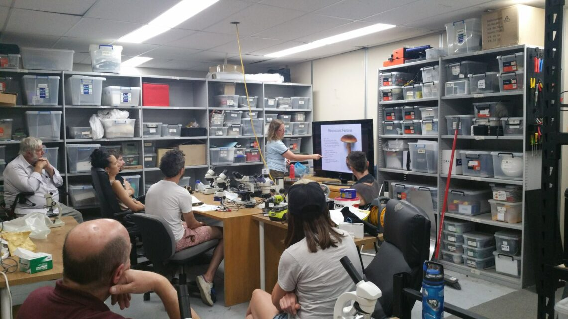 Microscopy workshops