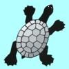 turtle_blue