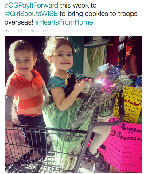 17 Girl Scouts Hearts from Home