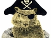 groundhog-pirate2