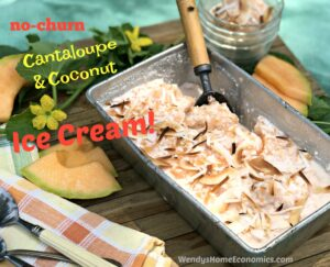 No Churn Cantaloupe & Coconut Ice Cream with Vanilla Bean