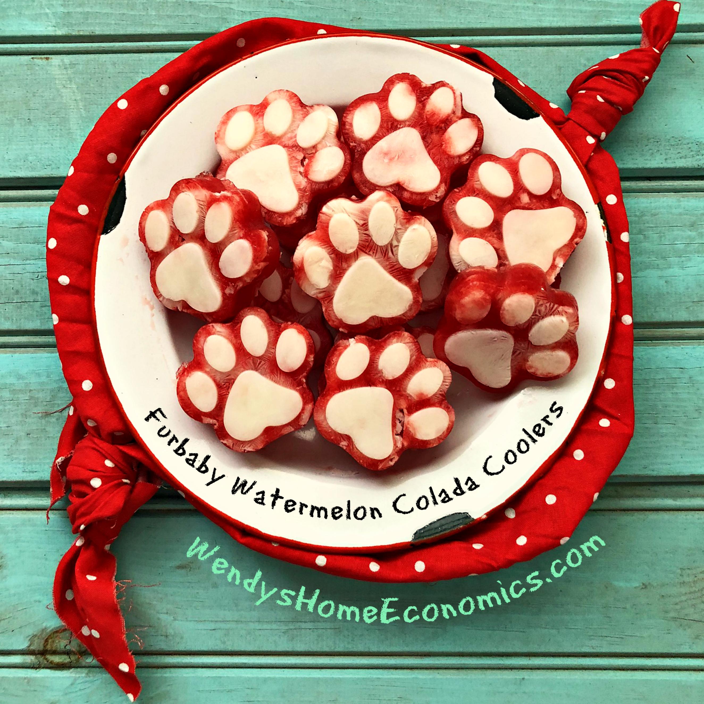 Furbaby Watermelon Colada Coolers