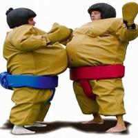 sumo-suit-200