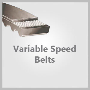 Variable Speed Belts
