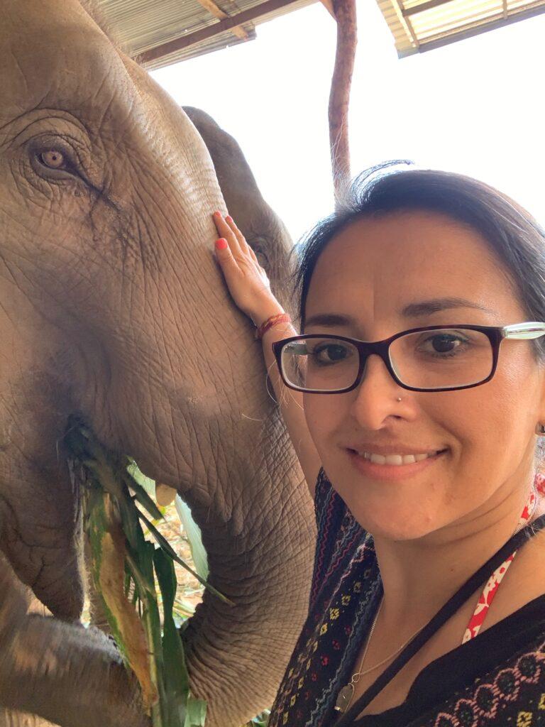 Mi amigo el elefante