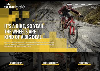 Disrupt | Sunringle website