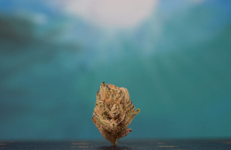 beach wedding limited edition strain review