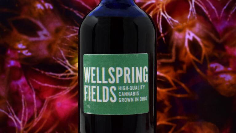 Wellspring Fields - Olive Oil Showcase 1080 2