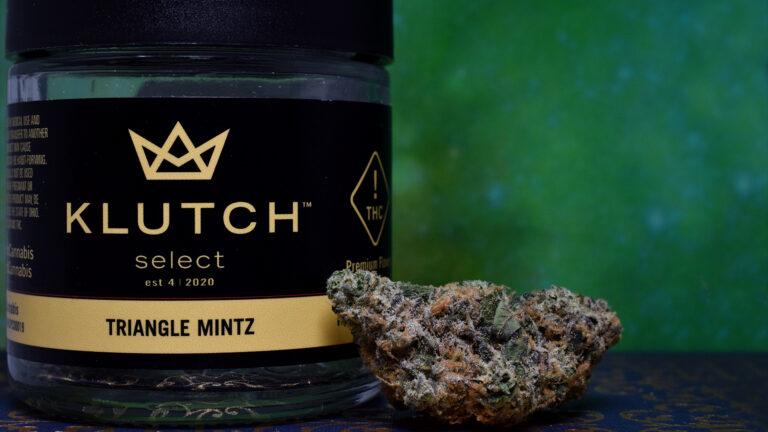 Triangle Mintz - Klutch - Showcase 2 2K