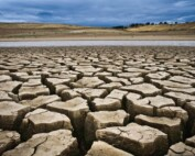 How-To-Prepare-For-A-Drought-1200x800