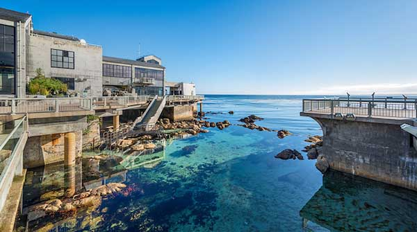 Monterey Area Attractions