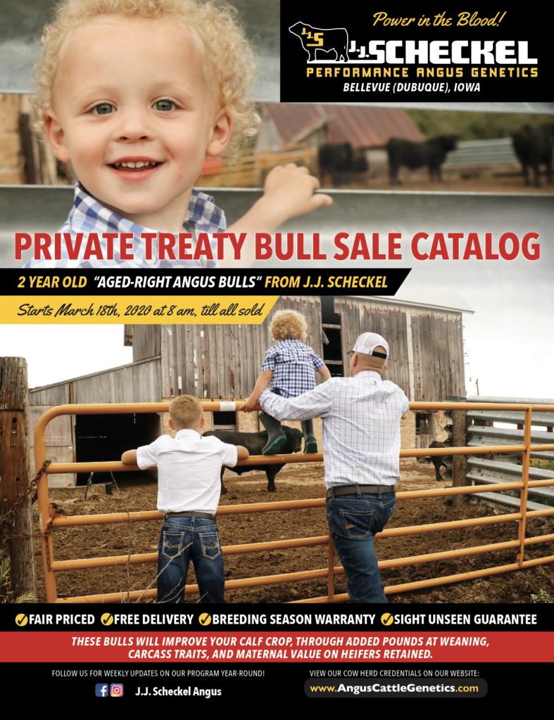 Bull Sale Cover