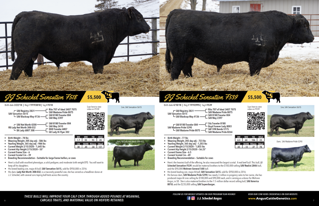 Private Treaty Bull Sale Spread