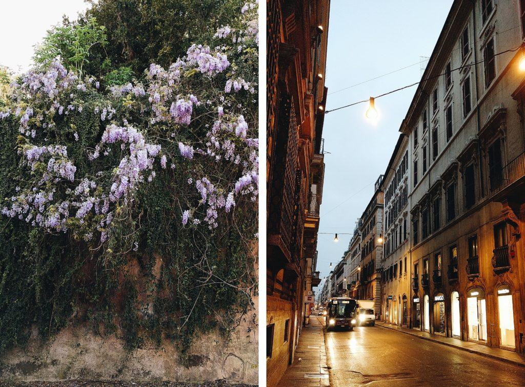 Lilacs and Italian street at dawn