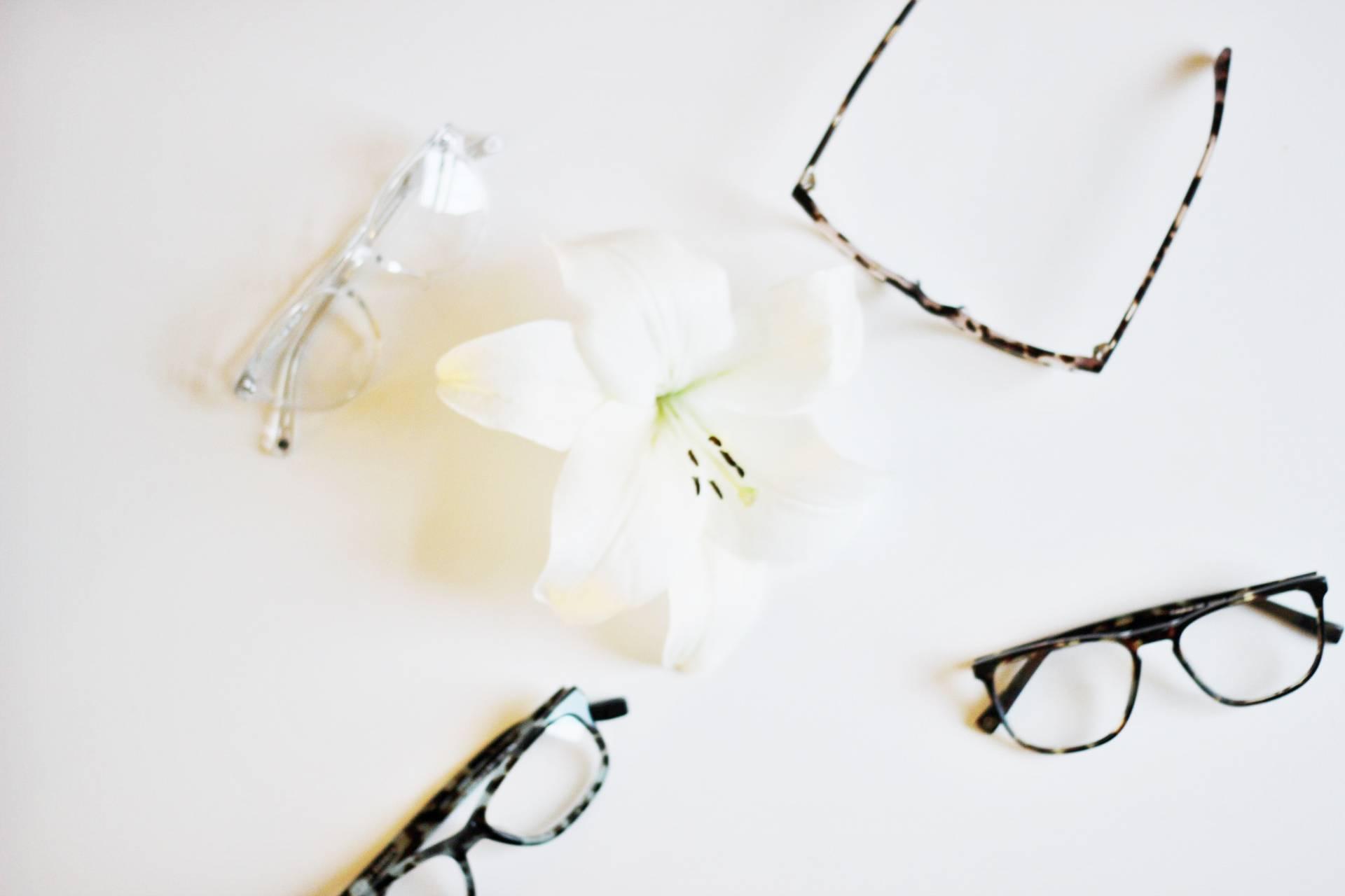 warby-parker-designer-eyewear- Glasses Warby Parker