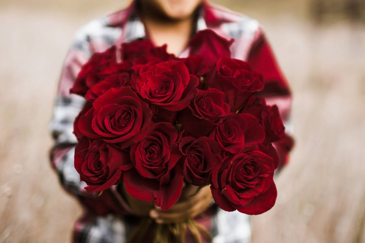 love-your-neighbor- red roses