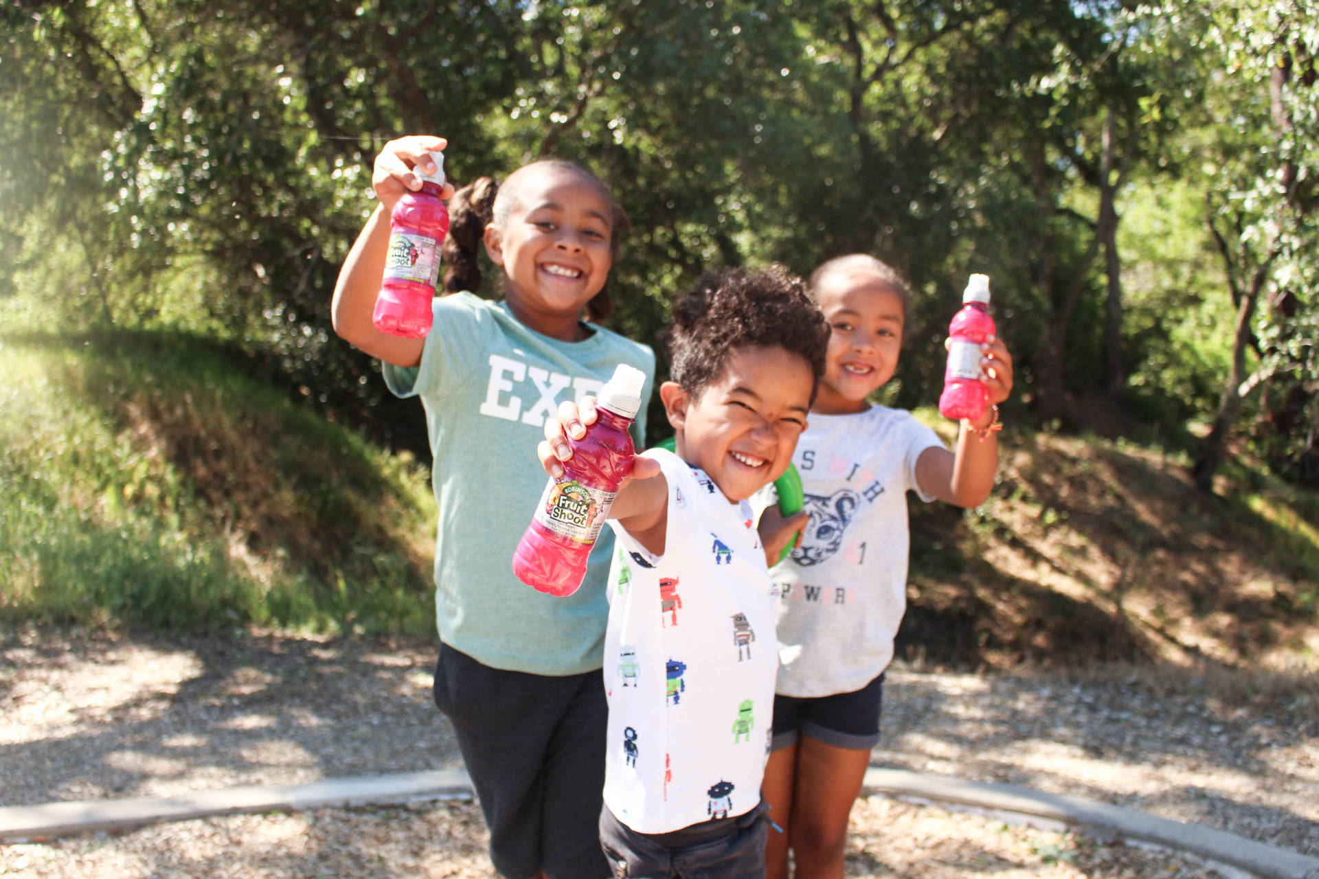 It's My Thing- My Kids' Top Ten Favorite Things- Check out this amazing product for kids!! Fruit Shoot® is made with no artificial flavors and offers varieties made with real sugar, as well as no sugar added! A must try!!