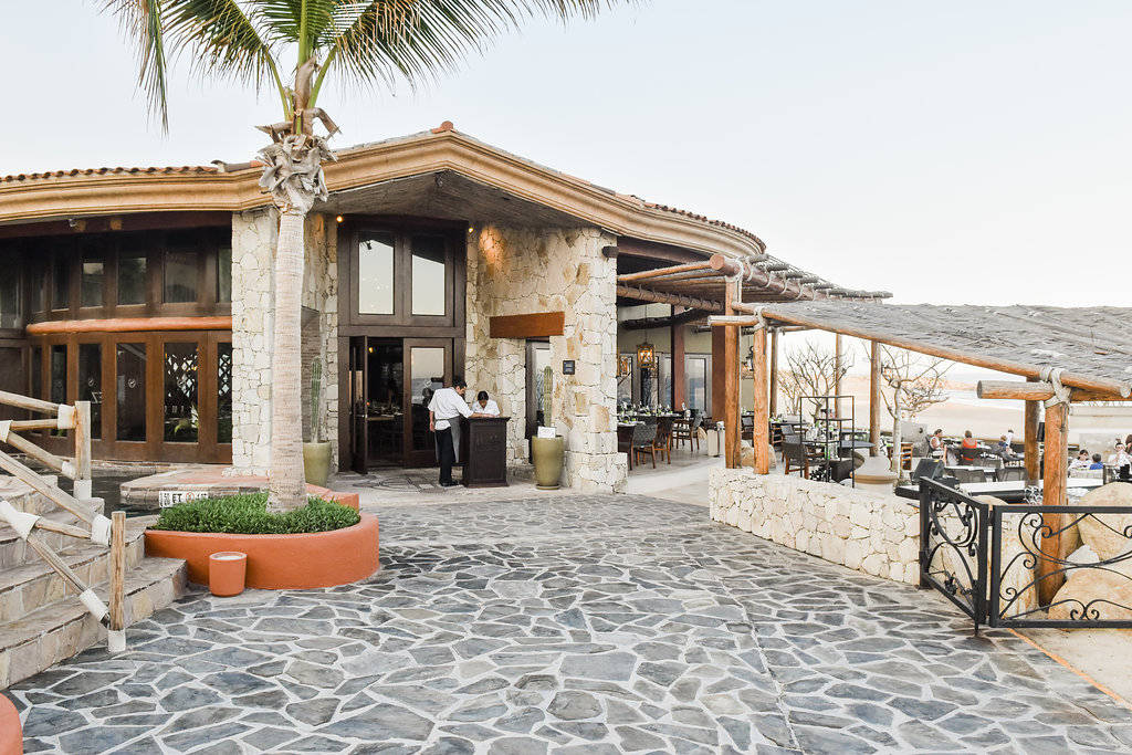 Weekend Wanderer: Los Cabos Mexico: Our home base as the Sheraton Grand Los Cabos, Adventuring on the Sea with Cabo Adventures and sight seeing in San Jose! Incredible trip to Cabo!