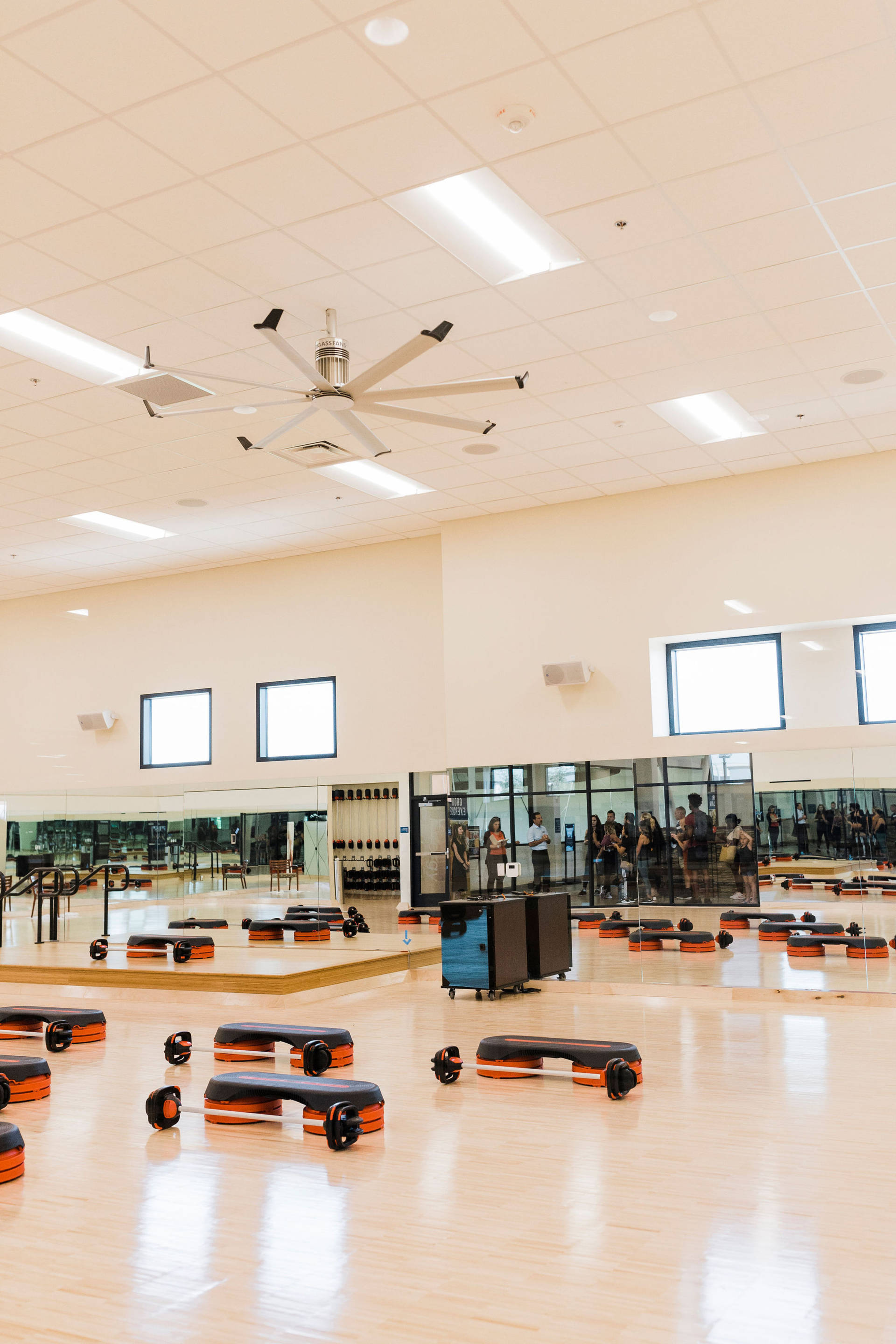Villa Sport Athletic Club and Spa- Roseville
