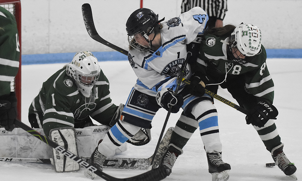 2020-2021 Hockomock Girls Hockey Preview