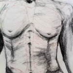 "Original Art , Bone study - charcoal and conte DAVE - ""PRELIM-SKELLY"" by Marcy Ann Villafaña DAVE - ""PRELIM-SKELLY"" 25"" x 19"" charcoal and conte 2013"