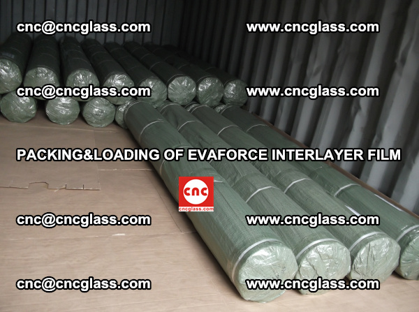PACKING AND LOADING OF EVAFORCE INTERLAYER FILM (3)