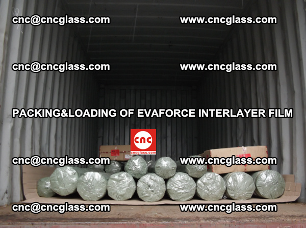 PACKING AND LOADING OF EVAFORCE INTERLAYER FILM (5)