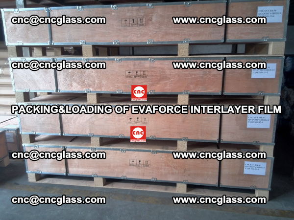 PACKING&LOADING OF EVAFORCE INTERLAYER FILM for safety laminated glass (14)