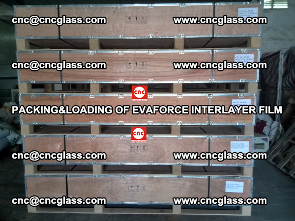 PACKING&LOADING OF EVAFORCE INTERLAYER FILM for safety laminated glass (15)