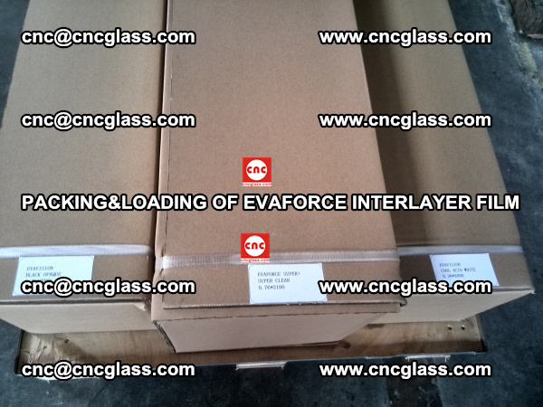 PACKING&LOADING OF EVAFORCE INTERLAYER FILM for safety laminated glass (6)